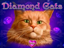 diamond-cats logo