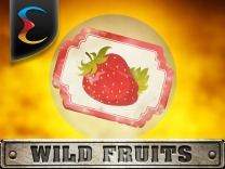 wild-fruits logo