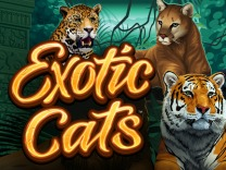 exotic-cats logo