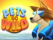 pets-go-wild logo