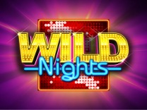 wild-nights logo