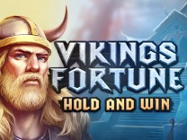 vikings-fortune-hold-and-win logo
