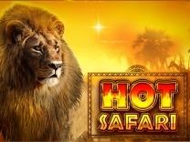 Hot Safari