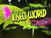 insect-world-hd logo